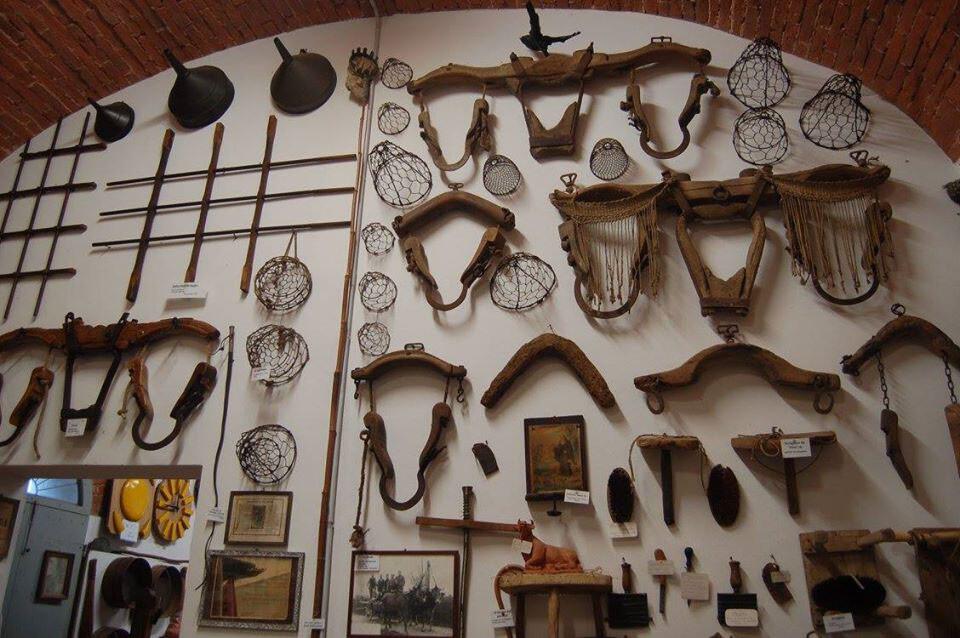 """Il Museo della civiltà contadina """"Giuseppe Riccardi"""" di Zibello, aperto con ingresso libero"""