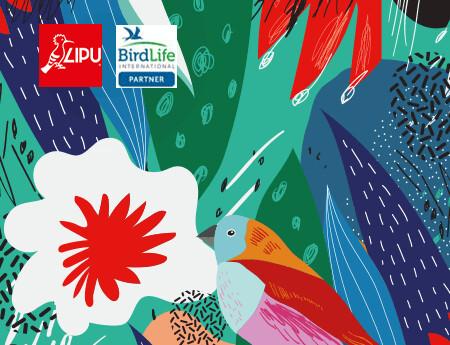 Natura 2000 Day  21 e 23 maggio: la natura live sui Social della Lipu