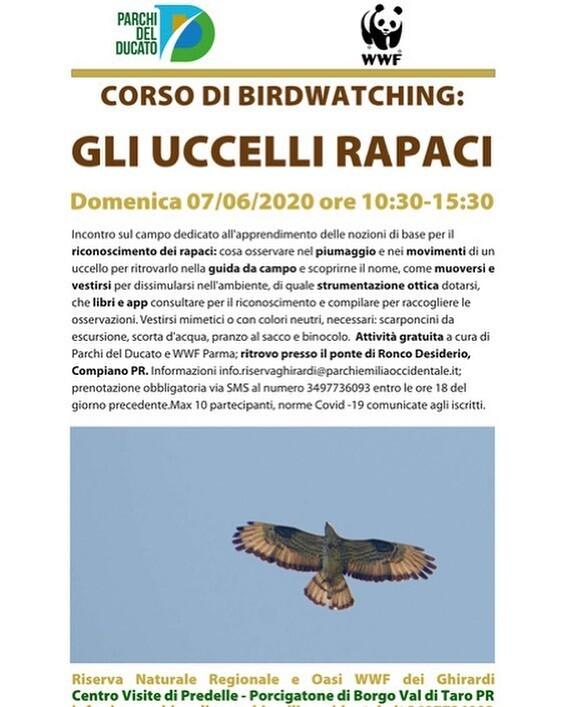 CORSO DI BIRDWATCHING: GLI UCCELLI RAPACI  all'oasi dei Ghirardi