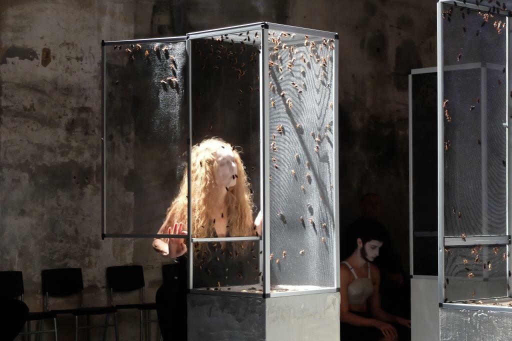 Sul portale del Teatro Regio  quattro grandi creazioni di Lenz Fondazione  Visibili in versione integrale  per tutta l'estate