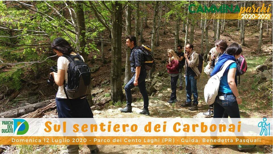 Camminaparchi: Il sentiero dei Carbonai