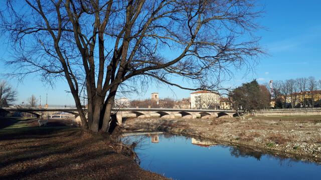 Dal Coordinamento associazioni ambientaliste di Parma: proposte in vista dei lavori di sfalcio nel torrente Parma