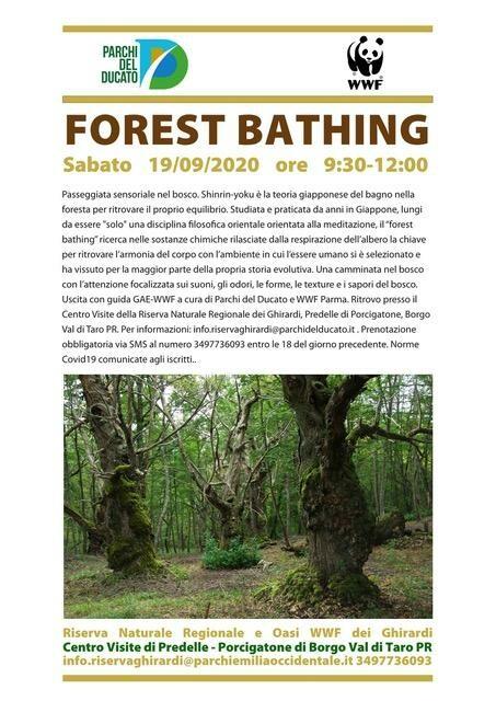 FOREST BATHING   Passeggiata sensoriale nel bosco  all'oasi dei Ghirardi