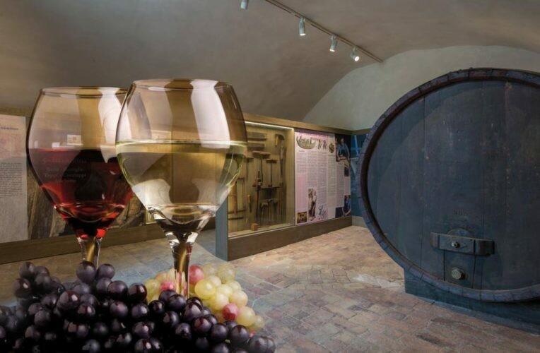Visita serale  alla Rocca Sanvitale e  al Museo del Vino  a Sala Baganza