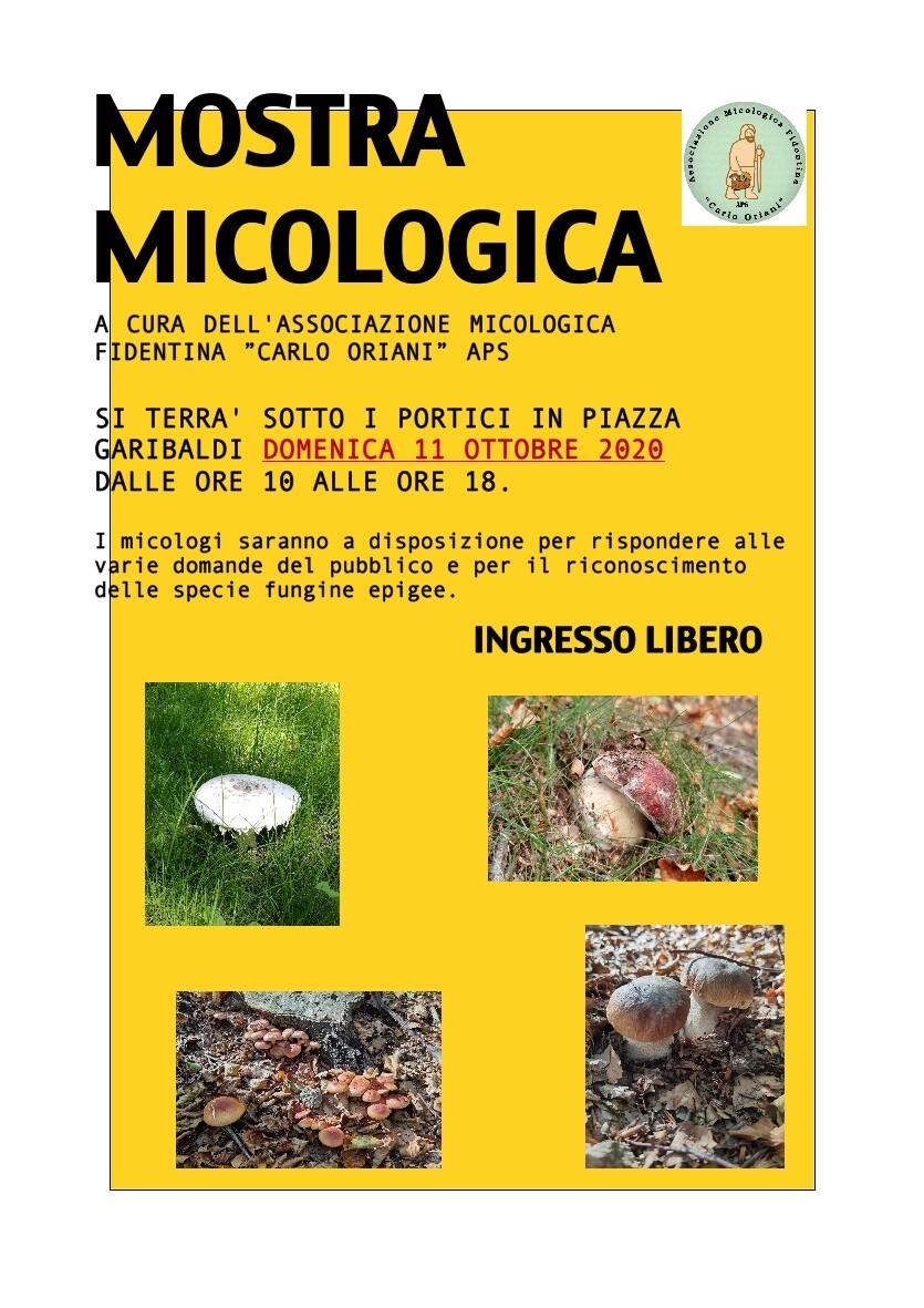Mostra micologica  a Fidenza