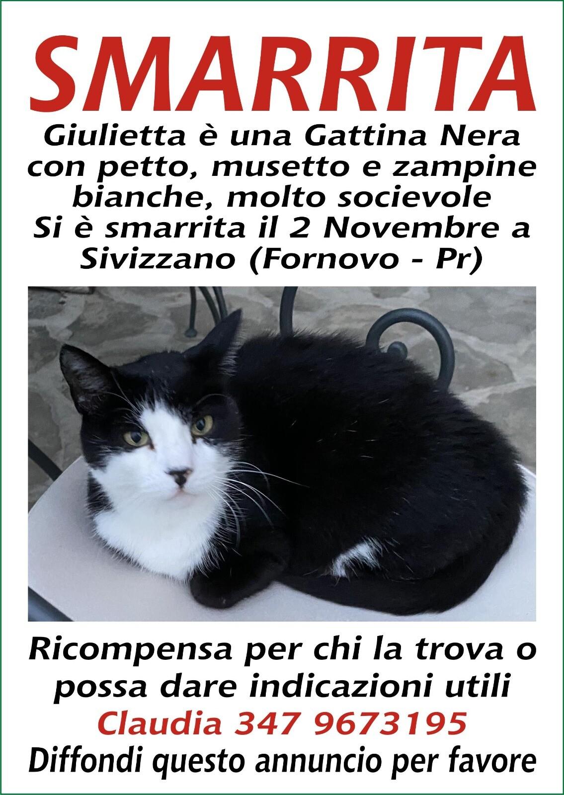 Giulietta si è SMARRITA in zona Sivizzano