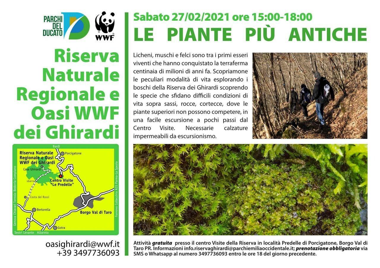 LE PIANTE PIÙ ANTICHE all'Oasi WWF dei Ghirardi